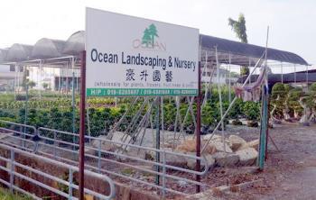 OCEAN LANDSCAPING & NURSERY